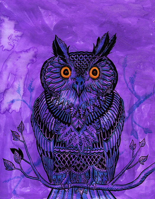Owl Illustration by Felix Wolfstrom